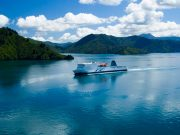 Multi Day Tours and Activities in New Zealand, China (Hong Kong, Macau, and Guangzhou)